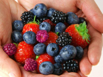 BERRIES AND BLUEBERRIES